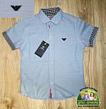 Комплект Armani для мальчика 3-4 года: голубая рубашка и синие брюки, фото 2