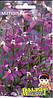 Семена цветов Матиола 1г (Малахiт Подiлля), фото 2