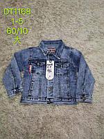 Курточка джинсовая для мальчиков S&D 1-5 лет