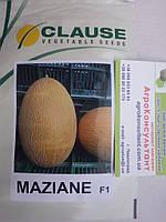 Семена дыни Мазин F1 (Clause) — 1.000 семян, ранняя