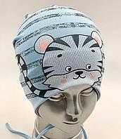 """ОПТ Хлопковая шапочка детская для мальчика """"Тигрик"""", с завязками, фото 1"""