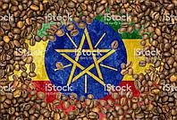 Кофе арабика в зернах Эфиопия Джимма 100грамм