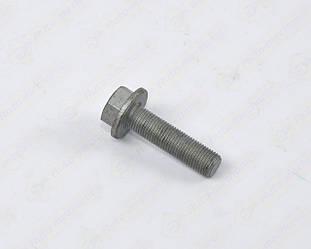 Болт крепления шкива коленчатого вала на Renault Trafic II 2001->2006 1.9dCi— Renault (Оригинал) - 8200689705