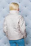 Жіноча демісезонна куртка 42-58 рр.(3 кольори), фото 4