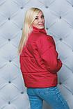 Жіноча демісезонна куртка 42-58 рр.(3 кольори), фото 8