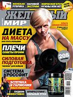 Железный Мир 2013 № 07 (Ольга Вязметинова)