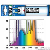 JBL Лампа Аквариумная SOLAR MARIN BLUE T8 25 Вт, 75 см.