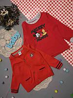 Кофта 12-18 м, кофточка для мальчика, нарядная кофточка, детский реглан, детский свитшот, свитер детский
