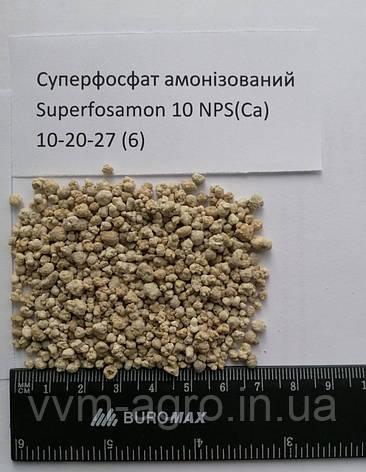 Суперфосфат амонізований Superfosamon 10 NPS(Ca) 10-20-27 (6), фото 2