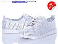 Туфли женские  Бабочка р36-41код (2436-00)