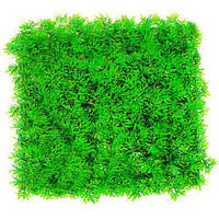 Аквариумное растение Aquatic Plants-коврик, 25х25х9 см (0525)