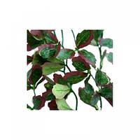Искусственное растение Repti-Zoo Hedera TP006