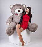 Большой плюшевый мишка Yarokuz Ричард 200 см Капучино, фото 5