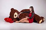 Огромный мягкий мишка Yarokuz Уильям 250 см Шоколадный, фото 6