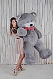 Великий плюшевий ведмедик Yarokuz Річард 200 см Сірий, фото 2
