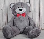 Великий плюшевий ведмедик Yarokuz Річард 200 см Сірий, фото 3