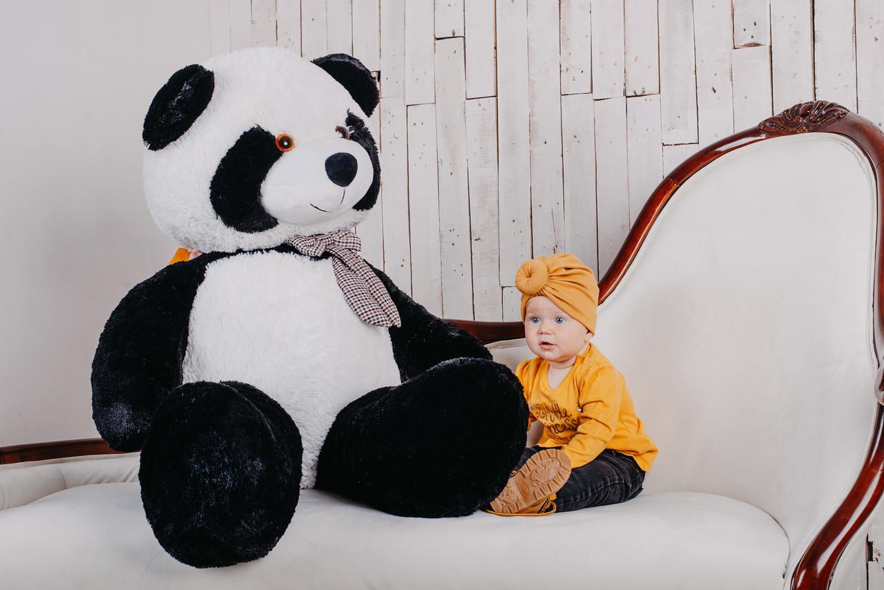 М'яка іграшка Yarokuz ведмідь Панда 165 см