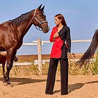 Жіночий брючний костюм з жакетом червоний з чорним, фото 1