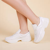 Модні жіночі кросівки натуральна шкіра Розмірний ряд 36-41, фото 3