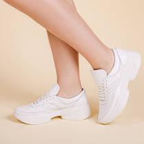 Модные женские кроссовки натуральная кожа Размерный ряд 36-41, фото 3