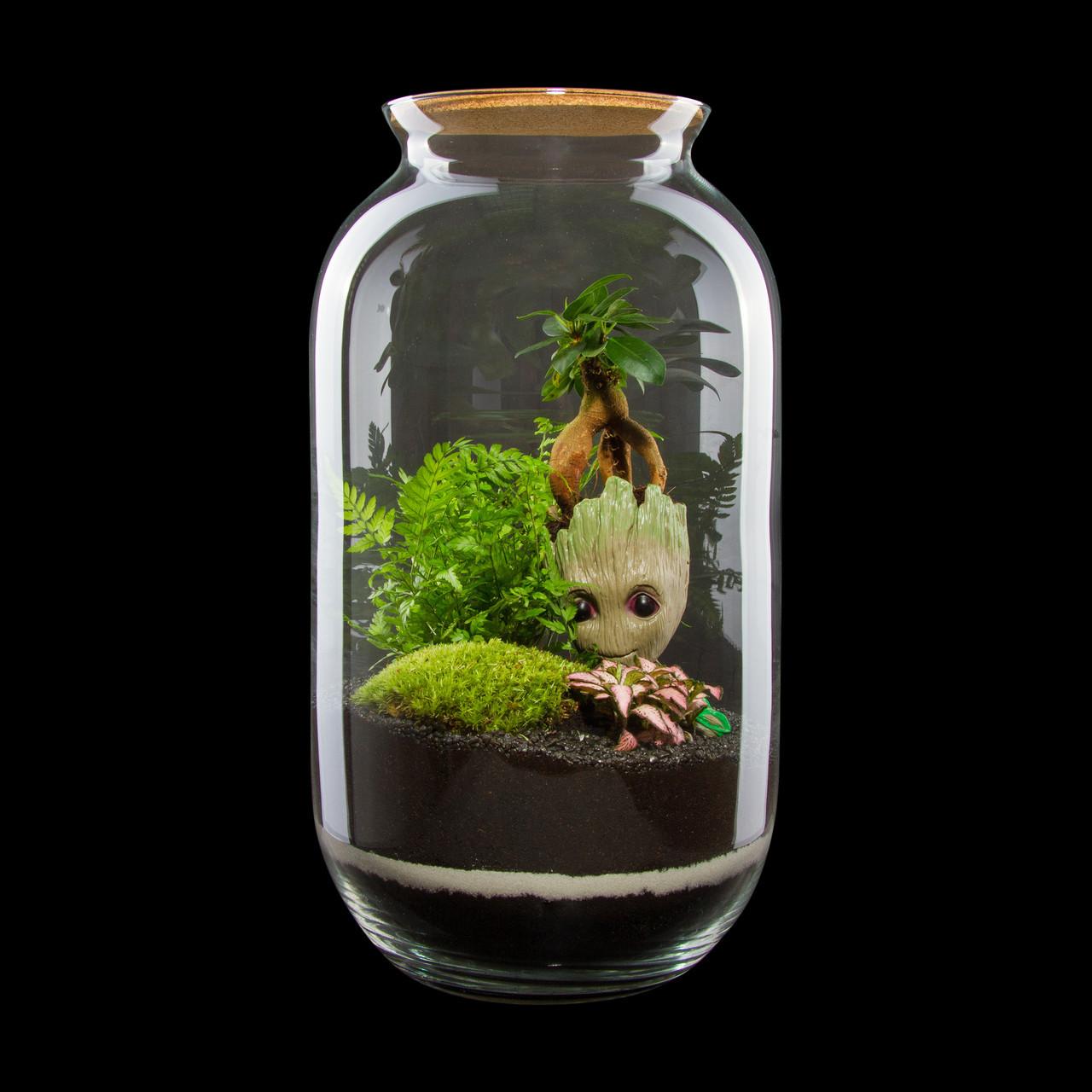 Оригінальний флораріум в банку з малюком Грутом Ф1