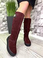 Женские кожаные сапоги высокий Угг зима бордовые, фото 1
