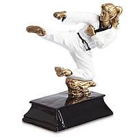 Статуэтка  наградная спортивная Карате  HX1836-B8, фото 1