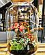 Оригінальний флораріум в банку з малюком Грутом Ф1, фото 4