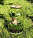 Оригінальний флораріум в банку з малюком Грутом Ф1, фото 5