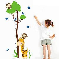 Интерьерная наклейка на стену Детская - Ростомер Зверята AY867
