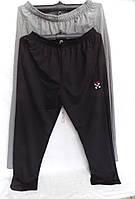 Штаны мужские спортивные весна-осень прямые большой размер (54-62) OffWhite (цвета: черный,синий, серый) оптом