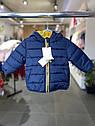Детская демисезонная курточка для малыша Vertbaudet (Франция)/ синяя / жёлтая 9 мес/71 см, фото 7