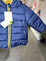 Детская демисезонная курточка для малыша Vertbaudet (Франция)/ синяя / жёлтая 9 мес/71 см, фото 9
