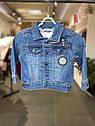 Детская джинсовая курточка для малыша Vertbaudet (Франция) ,для  мальчика 18 мес/80 см, фото 5