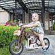 Беговел мотоцикл Bartka Daisy Sign коричневый Vel-21, фото 6