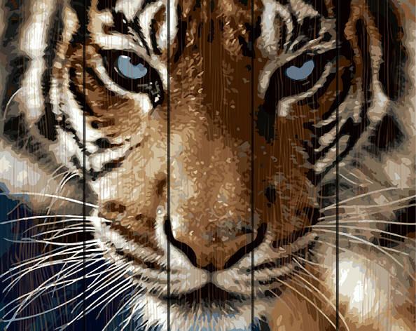 Картина по номерам на дереве 40*50см. Взгляд тигра Rainbow Art GXT8767 в подарочной коробке, фото 2