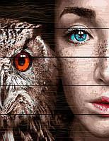 Картина по номерам на дереве 40*50см. Девушка и сова Rainbow Art GXT30916 в подарочной коробке