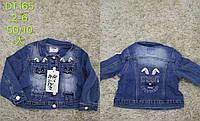 Джинсовая курточка для девочек S&D, 2-6 лет. Артикул: DT165