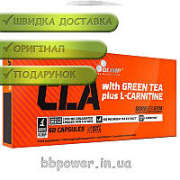 Жиросжигатель OLIMP CLA with Green Tea plus L-Carnitine Sport Edition 60 капс