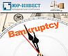 Етапи проведення «спрощеної» процедури банкрутства