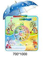 Стенд Календар природи в стилі Парасолька