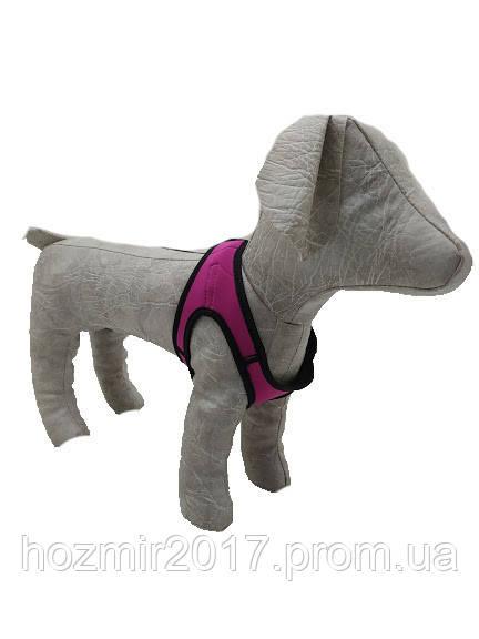 Шлейка жилет для собак Фітнес 2