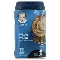 Gerber, Каша из цельной пшеницы, 8 унций (227 г)