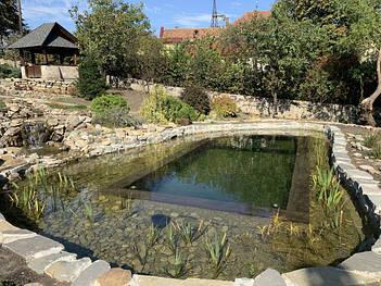 Плавательные пруды, водоемы, эко пруды, биопруды с растениями