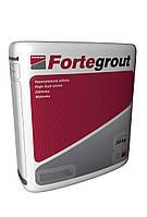 Ремонтный состав для щелей и трещин Fortegrout 1210