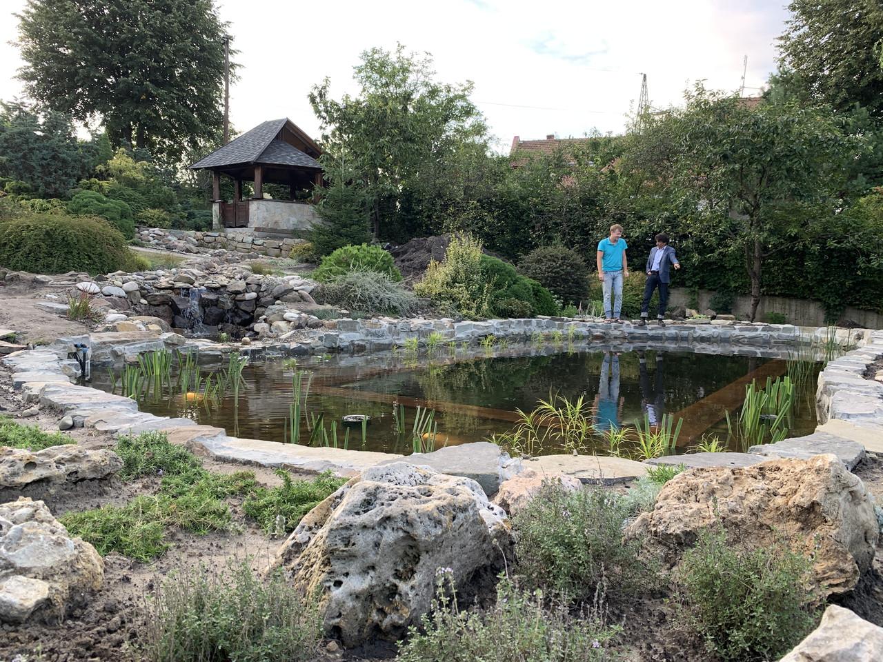 Изготовление плавательных прудов, экопруд, биопруд, пруд с растениями