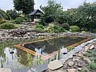 Изготовление плавательных прудов, экопруд, биопруд, пруд с растениями, фото 2