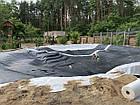 Изготовление плавательных прудов, экопруд, биопруд, пруд с растениями, фото 4