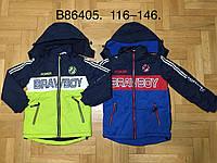Куртка на флисе для мальчиков оптом, Grace, 116-146 см,  № В86405, фото 1