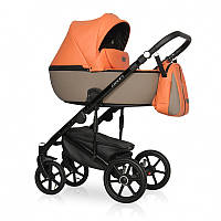 Дитяча коляска 2 в 1 Riko Ozon Ecco 24